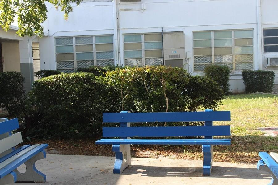 EMPTY: The popular lunch seats of Inlet Grove are vacant.