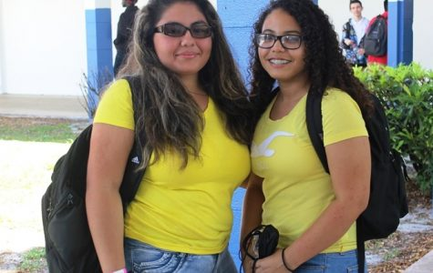 Photo of the Day: Yellow friends
