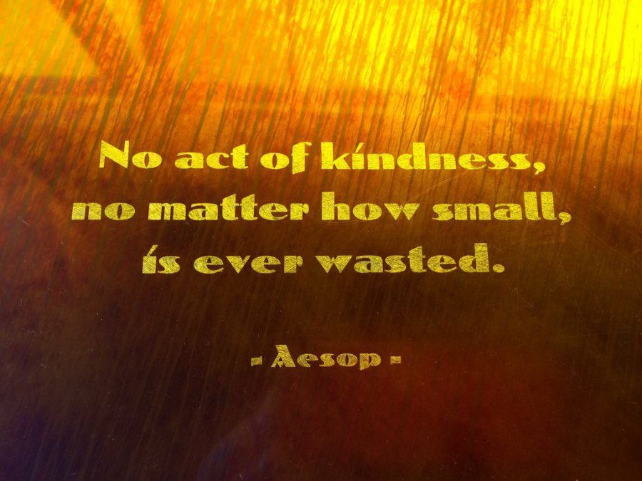 KINDNESS%3A+is+a+way+to+show+others+that+you+care+about+others.