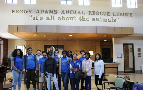 HELPING PAWS AND CLAWS: National Honor Society volunteers assisted the Peggy Adams Animal Rescue League by organizing goods that were donated to the facility, allowing the staff more time with the animals.