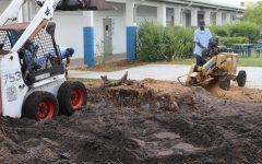 Flashback: Un-constructing a tree