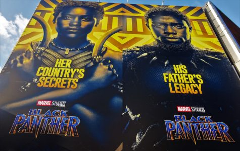 Praise for the 'Black Panther'