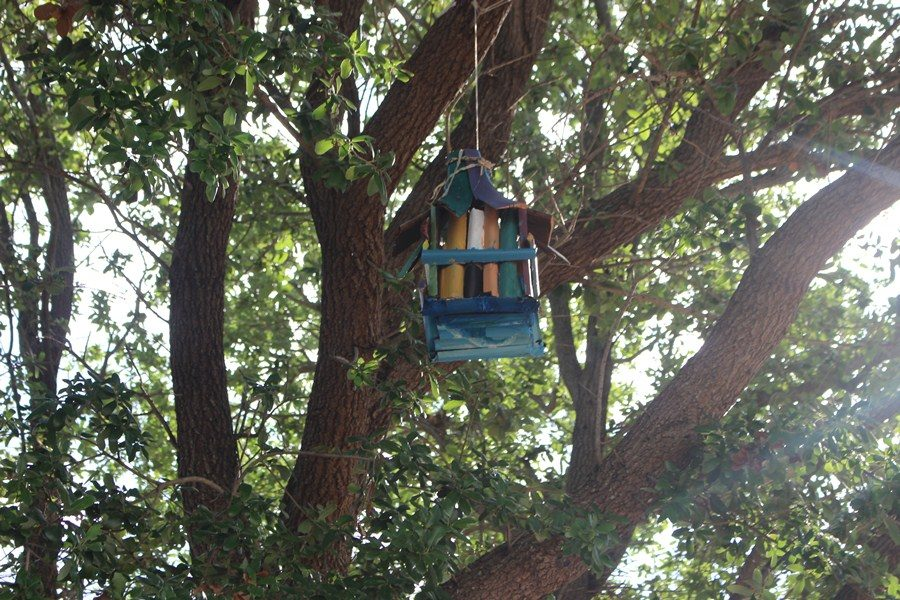 BIRDIE: Maritime Academy student, Veronica Mix made a birdhouse for Mr. Rices class out of pieces of bark found around school. The project was later displayed on a tree nearby.