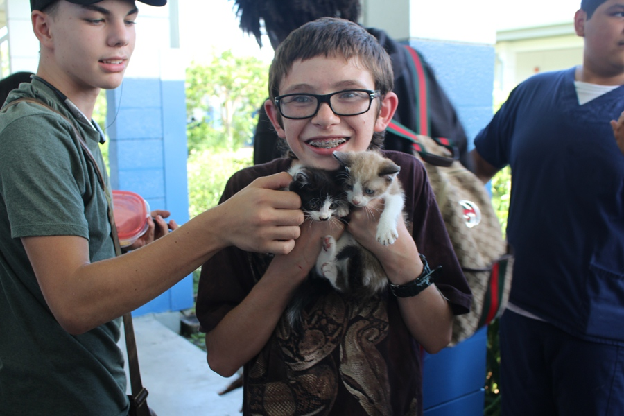 MEOW: Xain Lawrcy, center, a maintainer of the schools garden, stumbled upon two kittens during the lunch period, allowing students to pet them, like Nathaniel young, left.
