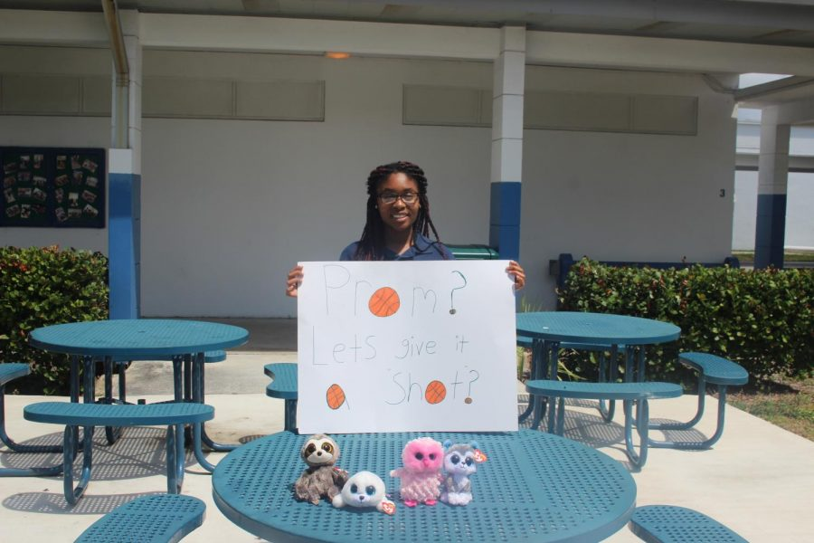 HOW CUTE: Alyssa Stephens was asked to prom by Steven Beier with a basketball themed poster and 4 small stuffed animals.